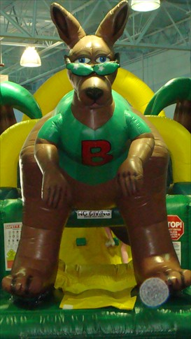 Boomerangs Bounce House Mascot