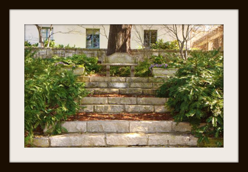 Stone steps at Dallas Arboretum