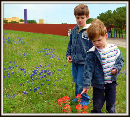 Two boys in bluebonnets