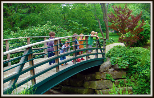 Bridge in Fort Worth Botanical Gardens