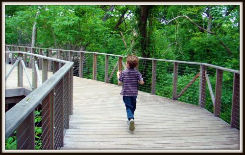 Botanical Gardens - Fort Worth boardwalk
