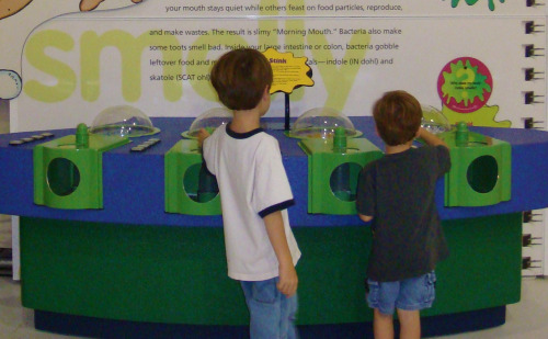Sniff Station at Grossology