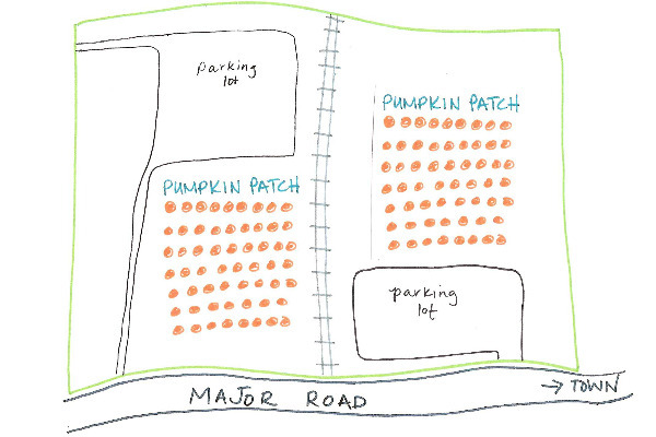 flower mound now has two pumpkin patches