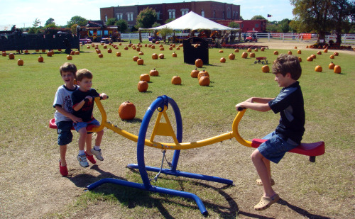 Pumpkin Express Teeter Totter