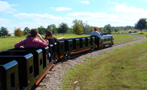 Pumpkin Express train ride