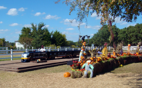 Pumpkin Express train