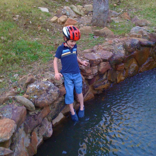 Reid slipping into pond