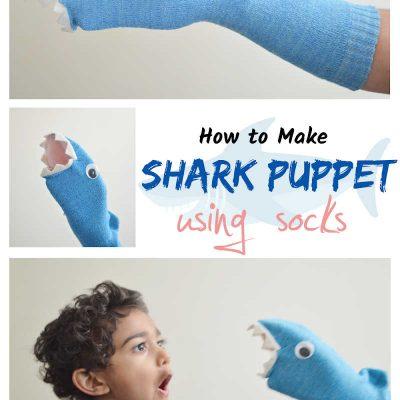 Requin marionnette chaussette bricolage