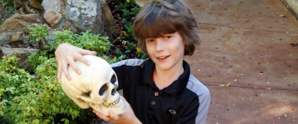 boy holding a Halloween plastic skull
