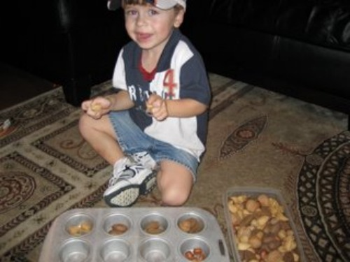 little boy with muffin tin of nuts