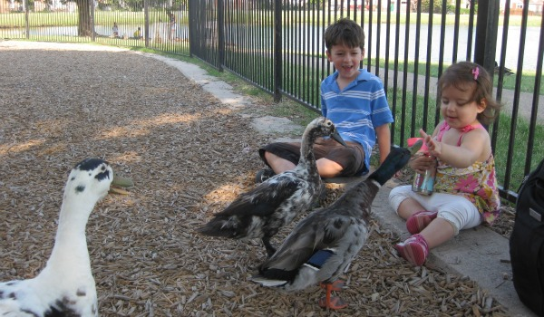 boy and girl with ducks 600x350