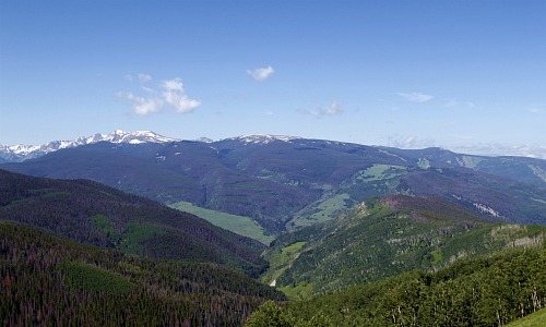 Vail mountain top in the summer