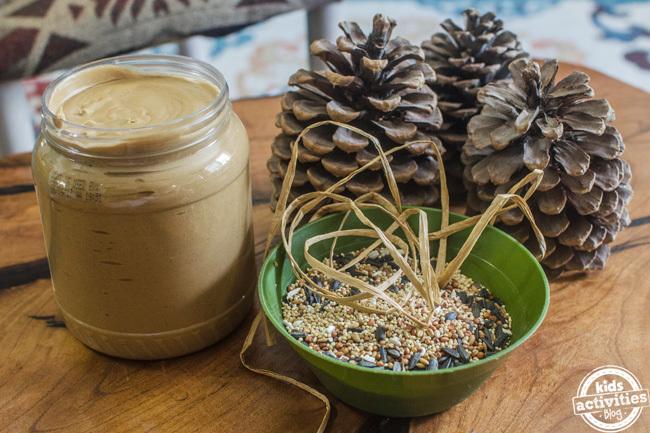pine cone bird feeder 1