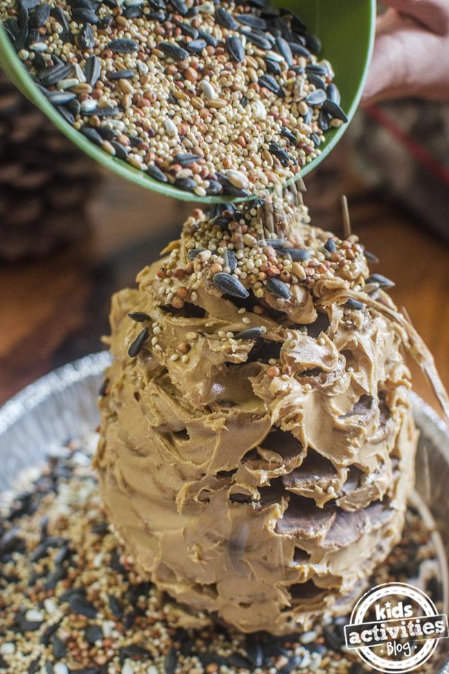 pine cone bird feeder 4