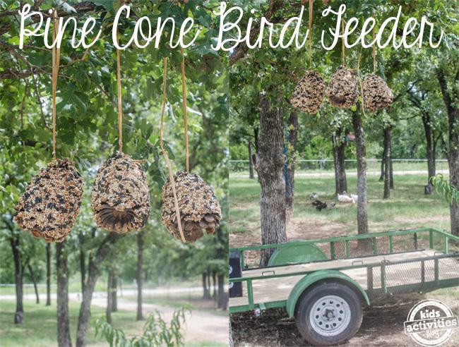 Cómo hacer comederos de aves con sus hijos - Good Matters ™ Blog