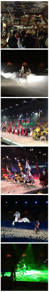Medieval Times Dalls