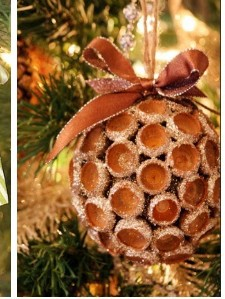 Natural Ornament Ideas