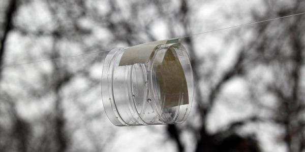Balloon rocket water bottle