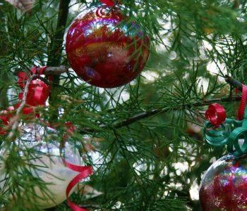 Homemade Christmas Ornaments on tree