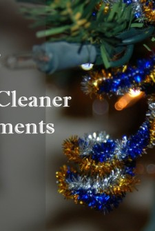 Pipecleaner Ornaments
