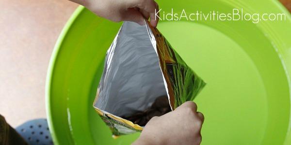 buoyancy experiment pennies in bag