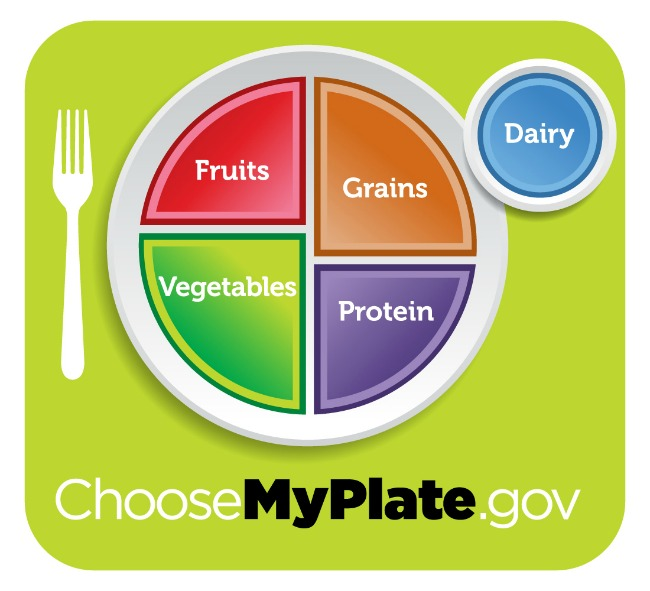 My plate food guidelines