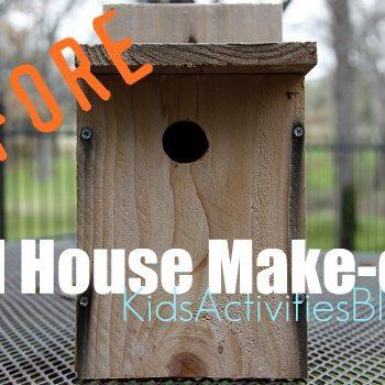 bird house make over before