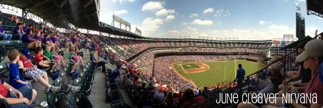 DMD panoramic photograph at ballpark