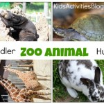 zoo animal hunt