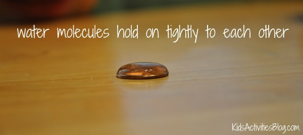 water molecules hold on tightly