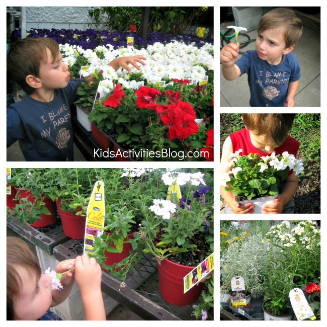 moon garden shopping