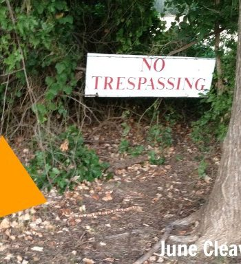 copperhead snake next to no trespassing sign