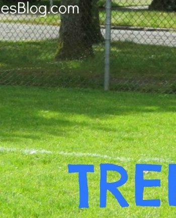 freeze tag tree