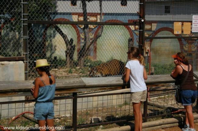 back to school zoo trip