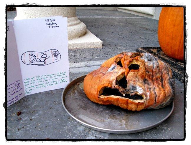 Rotty September 498