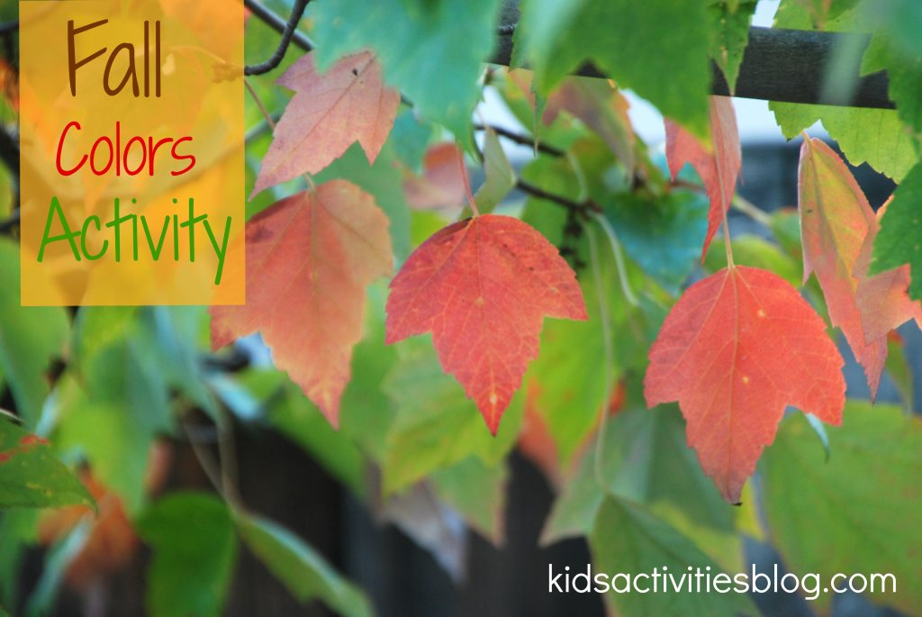 Free Printable for Learning Fall Colors