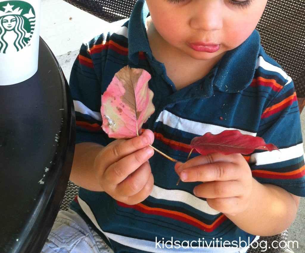Fall colors activities for toddlers - Learning Fall Colors By Collecting Leaves