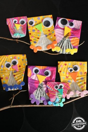 kab cupcake owls