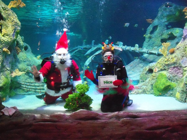 Holiday fun at legoland and sea life aquarium Arizona mills mall aquarium