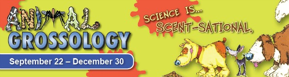 animal_grossology_banner