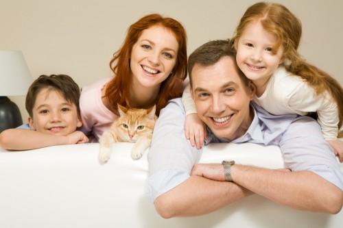 energy efficient family