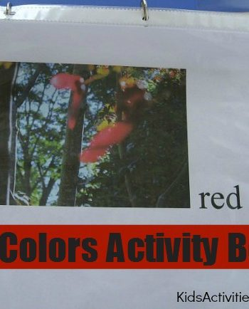 fall colors activity book