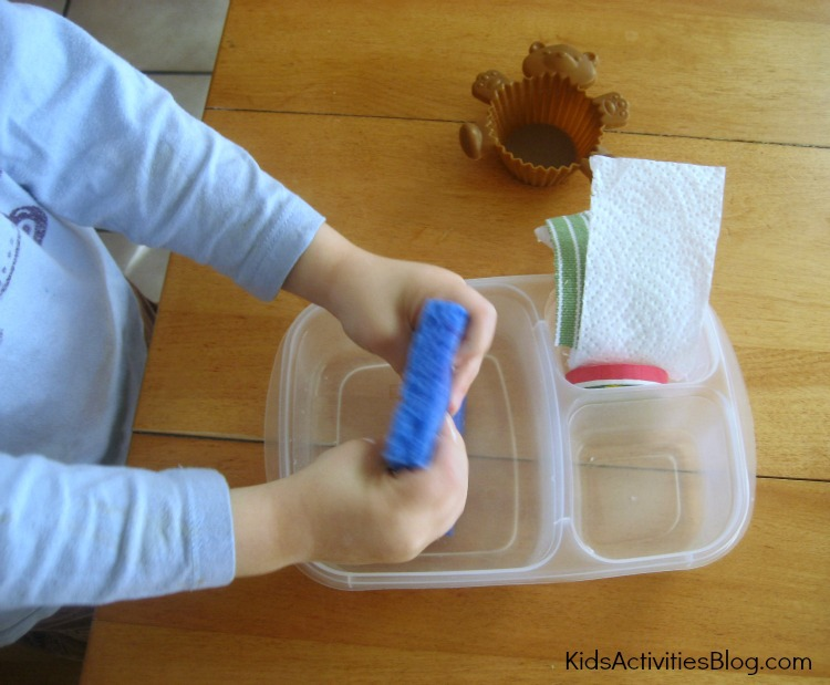 Hands on water absorption activity for kids