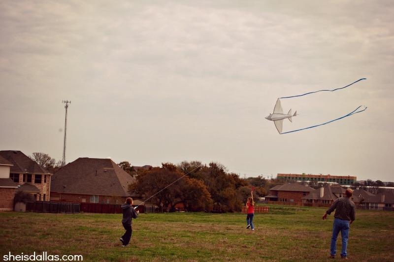 fly a kite sid