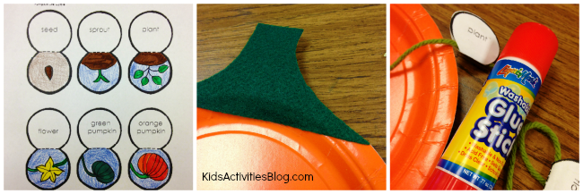 Pumpkin Life Cycle: an easy science craft for kids