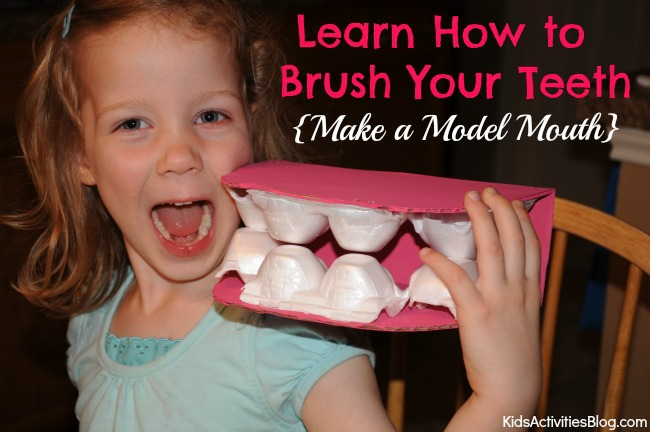 Your Teeth: Learn How to Brush Your Teeth {Make a Model Mouth}