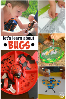 7 {Non-Icky} Ways To Learn About Bugs