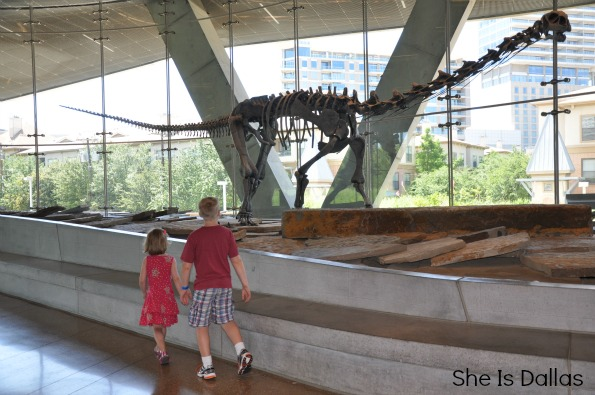 dinosaur at the perot museum