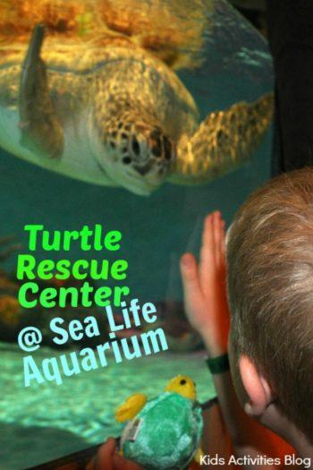 Turtle Rescue Center at Sea Life Aquarium Grapevine