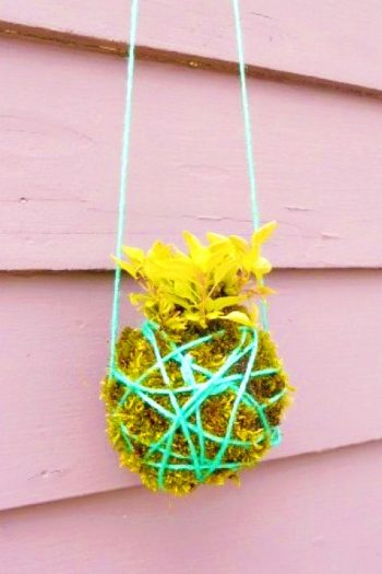 kokedama hanging garden for kids to make